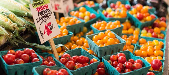 Support the Skippack Farmers Market in Montgomery County, PA