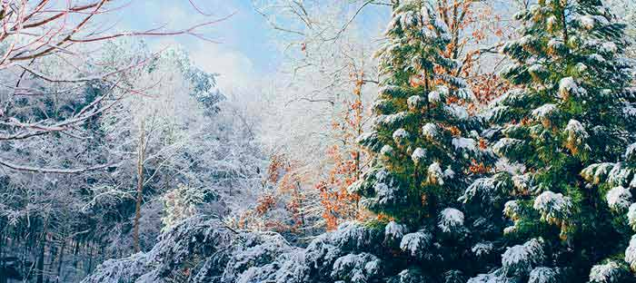 winter is a wonderful time to enjoy shopping, dining, and the wonderful sights in Skippack, Montgomery County PA